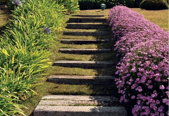 escadas externas jardim : escadas externas jardim:Decoração e Projetos – Projetos de escadas residenciais externas