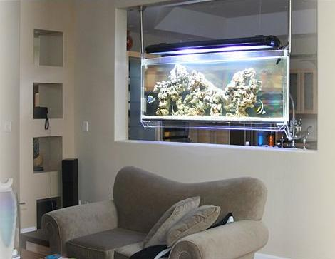 Decora o e projetos salas decoradas com aqu rios - Peceras pequenas decoradas ...