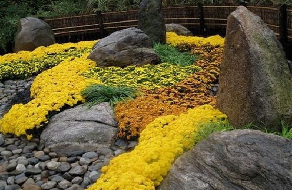 Сад камней фото своими руками