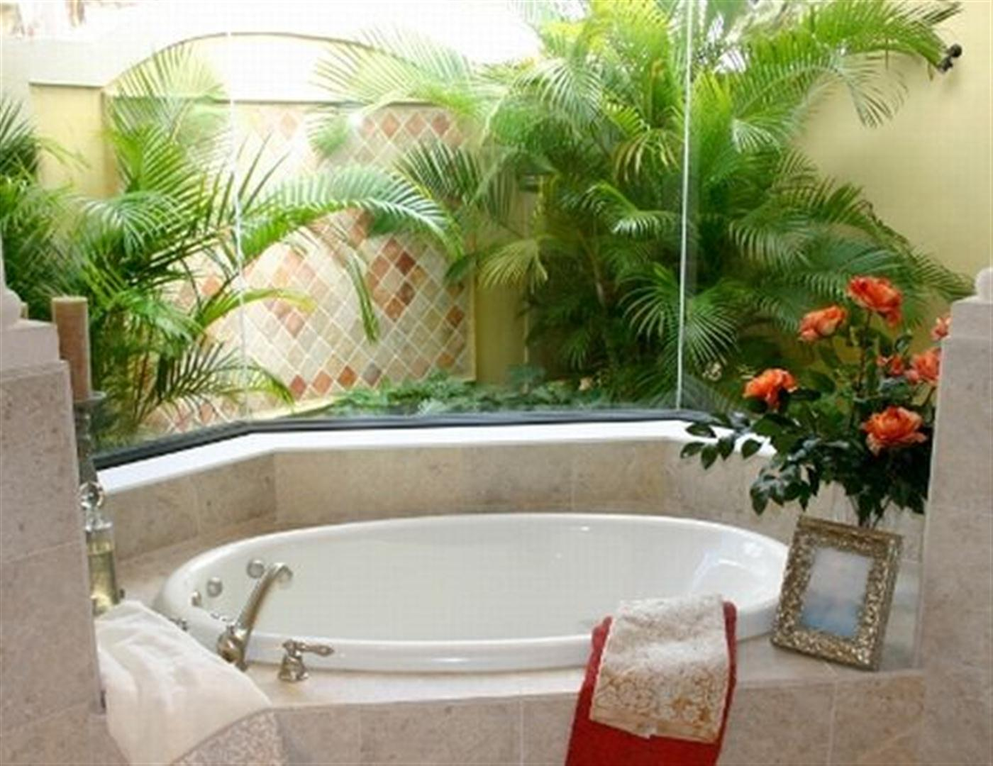 Decora o e projetos decora o de banheiros com plantas for Casas decoradas con plantas naturales