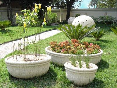 Fotos De Jardins   Vasos Decorados