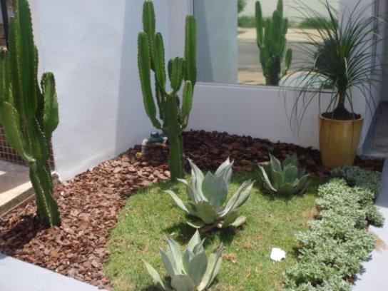 decoracao jardim pedras:Decoração e Projetos – Jardim pequeno com pedras