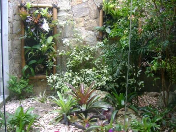 decoracao jardim bambu:bambu-jardim
