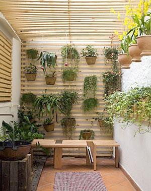 Decora o para corredor externo com fotos for Jardines redondos pequenos