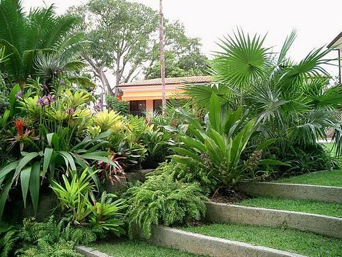 Projetos – Fotos de jardins de sítios – Dicas de Decoração