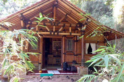 Investir em projetos de casas de bambu além ajudar o planeta ainda garante visual inovador e ultradescolado para seu lar (Foto: Divulgação)