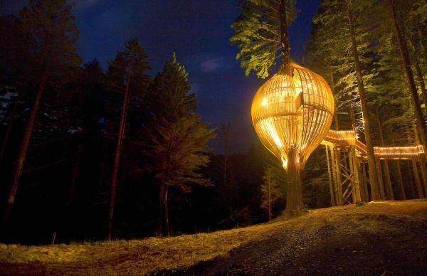 Os projetos de casa na árvore estão a cada dia mais inovadores (Foto: Divulgação)