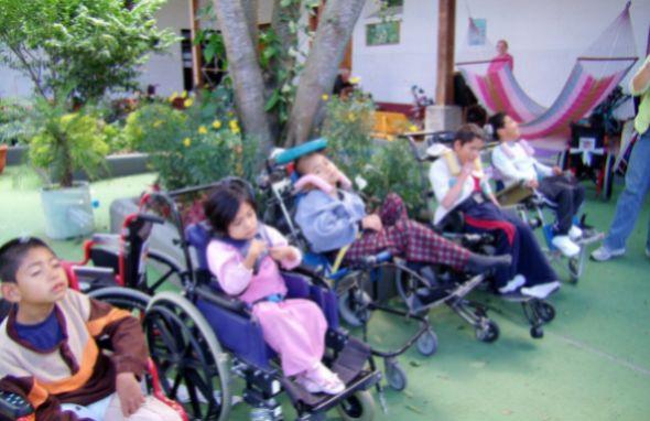 A decoração de jardim para portadores de necessidades especiais deve ser pensada com cuidado (Foto: Divulgação)