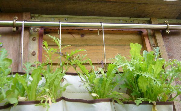 Com este jardim vertical para decorar os seus ambientes qualquer cantinho de sua casa vai ficar muito mais especial (Foto: instructables.com)