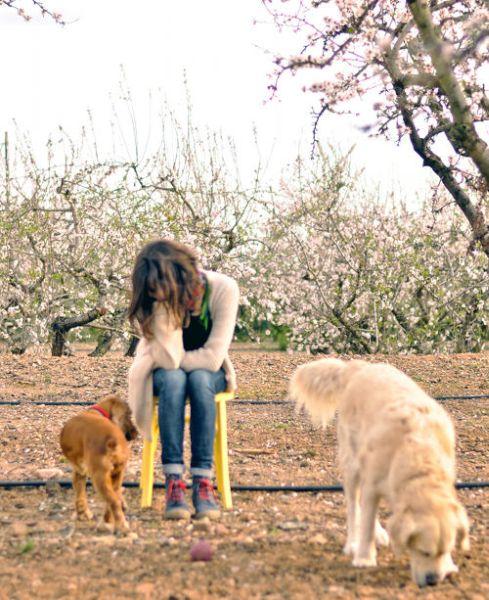 Você pode complementar a sua renda também com cadeira antiga customizada (Foto: designsponge.com)