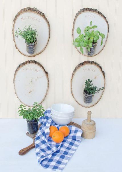 plantas jardim baratasDecoração e Projetos – 7 Ideias Baratas