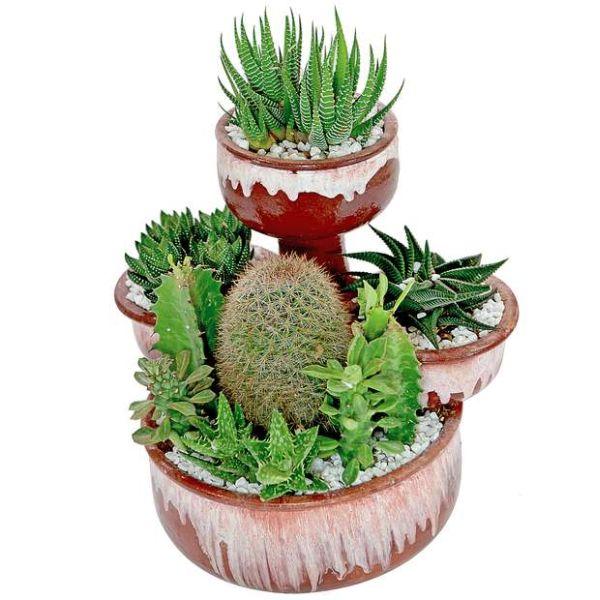 plantas de jardim que resistem ao sol Projetos – Ideias para