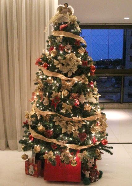 ideias para decorar arvore de natal branca : ideias para decorar arvore de natal branca: Projetos – 9 Ideias Diferentes para Decorar Árvore de Natal
