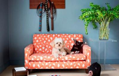 Decorar o cantinho do cachorro é fácil e pode ser bem barato, se você colocar as mãos na massa (Foto: mobly.com.br)