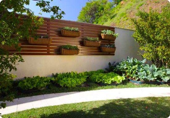 ideias baratas para jardim vertical : ideias baratas para jardim vertical:jardim vertical para a área externa é diferente, mas lindo (Foto