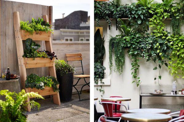 jardim vertical escada:Jardim Vertical para Área Externa – Dicas, Ideias