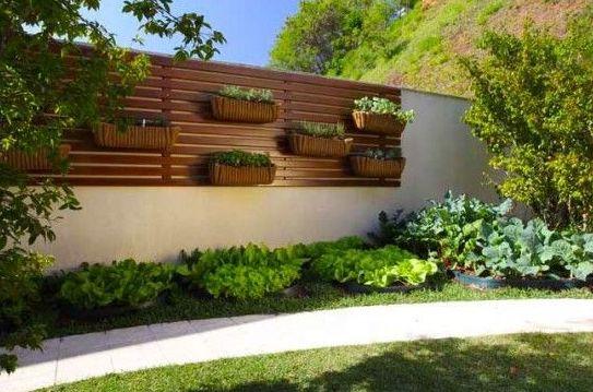 Projetos – Jardim Vertical para Área Externa – Dicas, Ideias