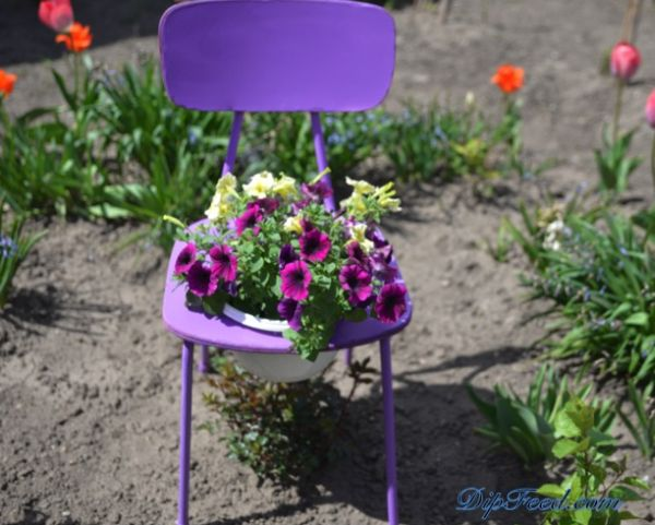 (Foto: dipfeed.com)