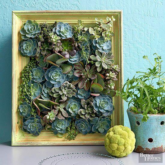 Jardim vertical para decoração de ambientes é lindo e prático (Foto: guiademanualidades.com)