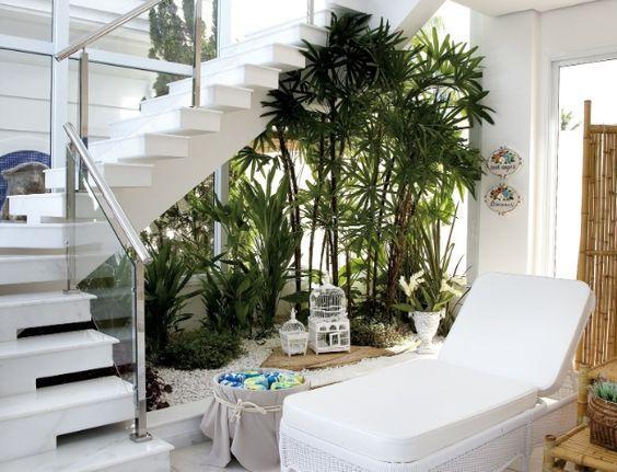 Entre os vários tipos de plantas para decoração de ambientes fechados, escolha o seu preferido (Foto: pinterest.com)