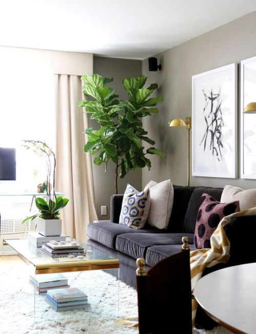 black and green living room ideas decora 231 227 o e projetos decora 231 227 o de canto de sala de estar 26587