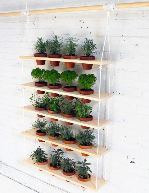 jardim vertical na prateleira