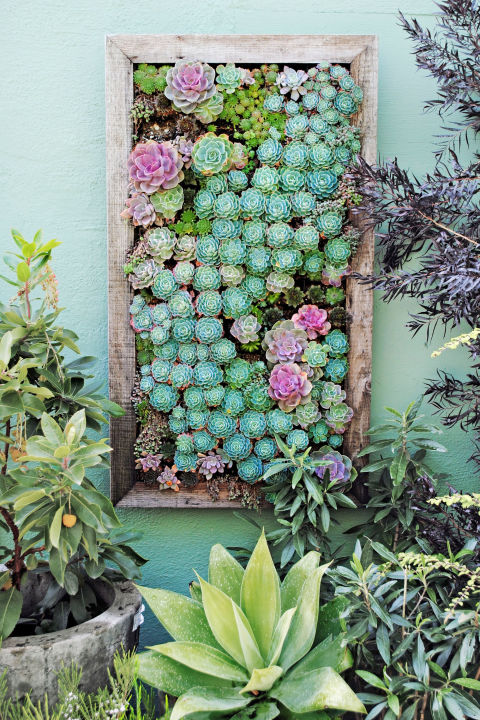 jardim vertical no quadro