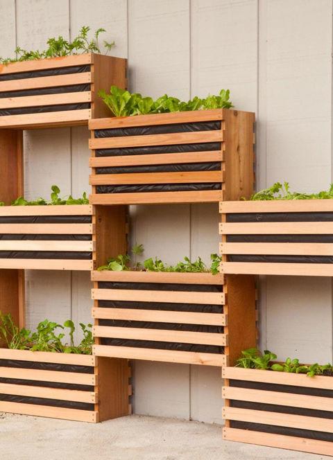 jardim vertical na caixa
