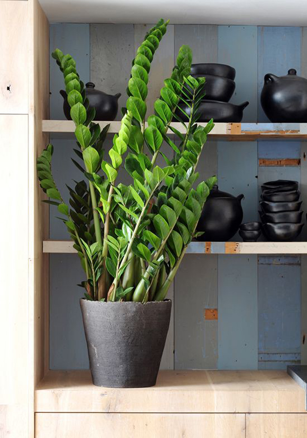 plantas de apartamento pequenas