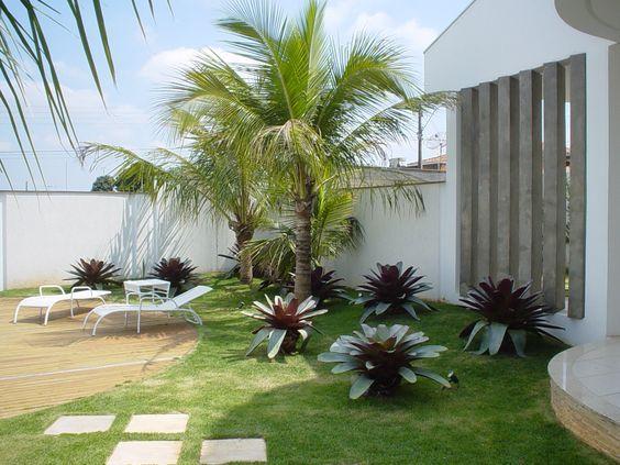 decoração com coqueiro com outras plantas