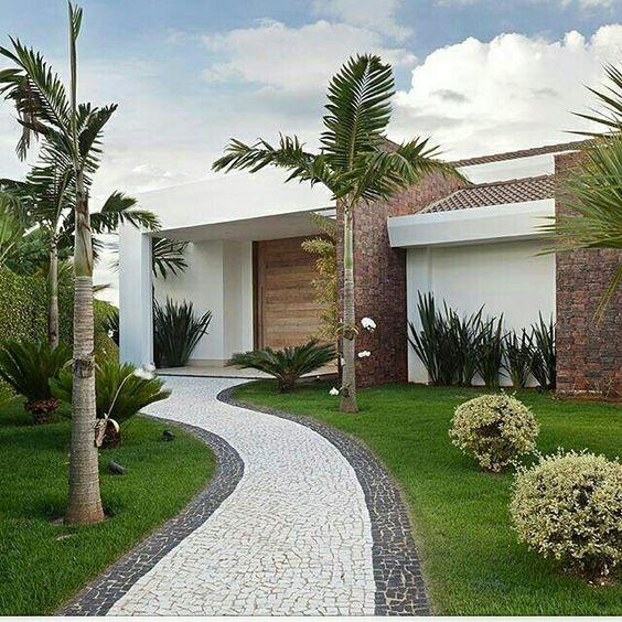 decoração com coqueiro na grama