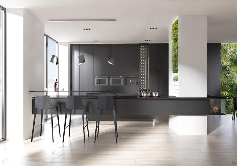cozinha branca e preta com plantas