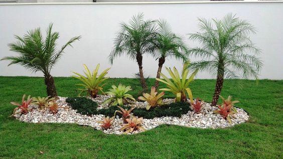 decoração com coqueiro no cercado