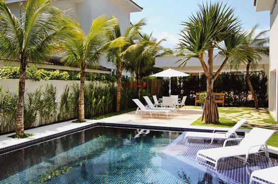 decoração com coqueiro ao redro da piscina