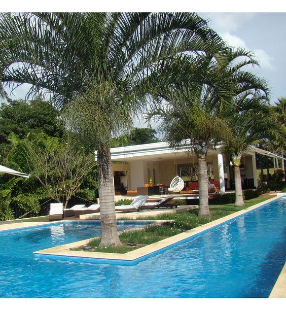 decoração com coqueiro no meio da piscina