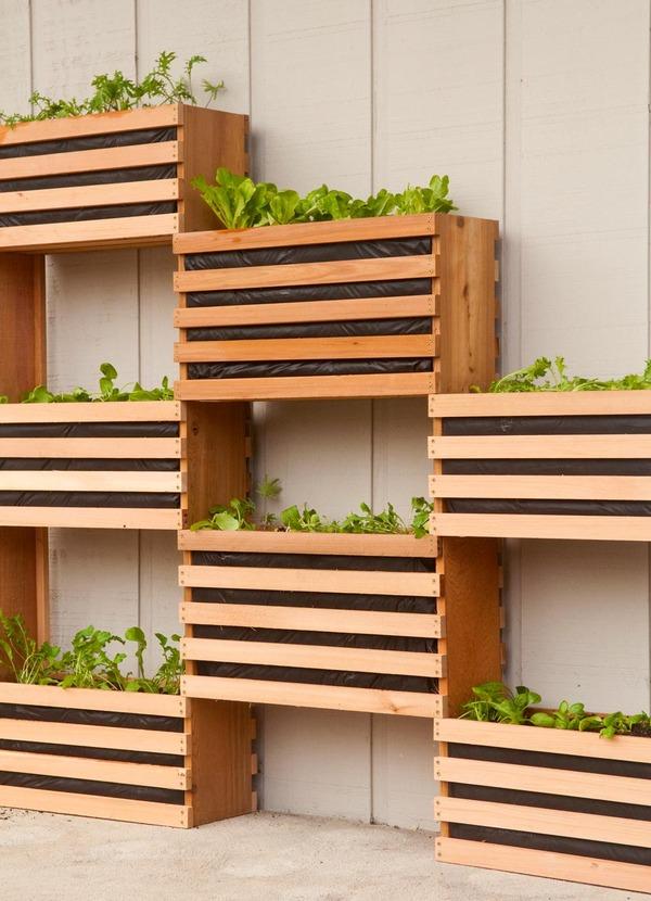horta vertical caixa