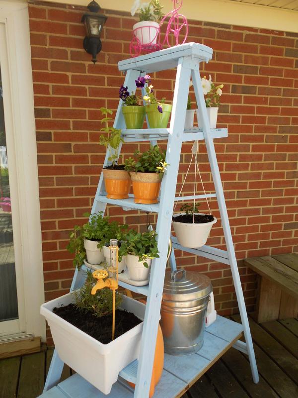 horta vertical na escada