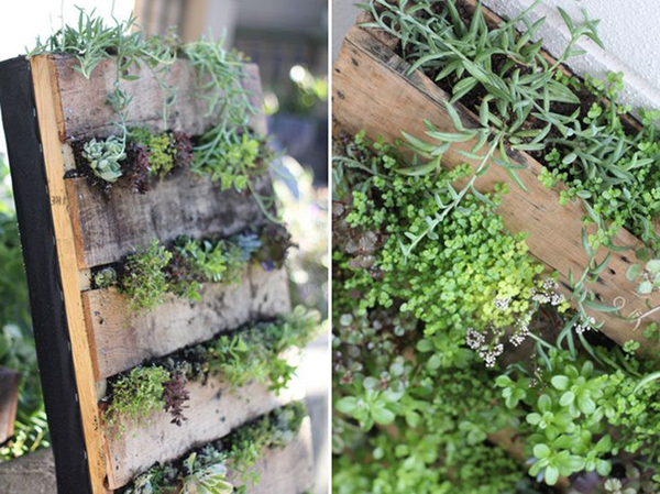 horta vertical palete