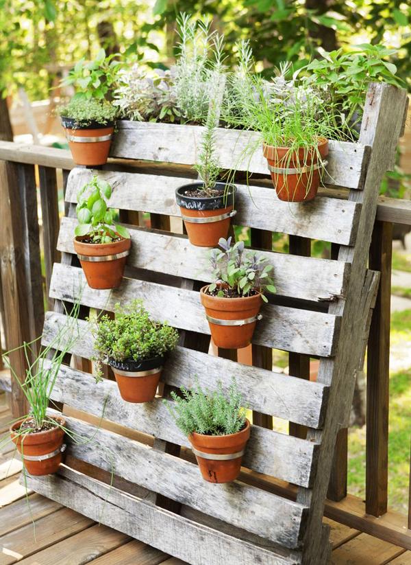 horta vertical sacada