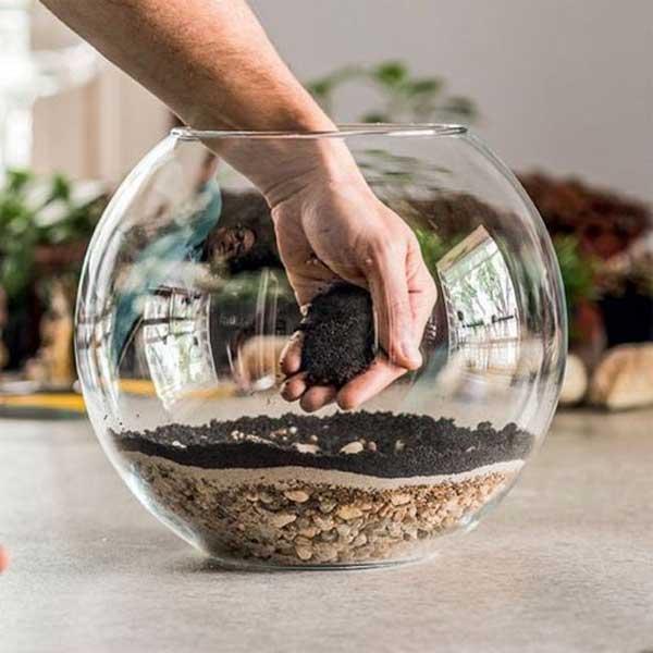 Como adubar um vidro para plantar suculentas