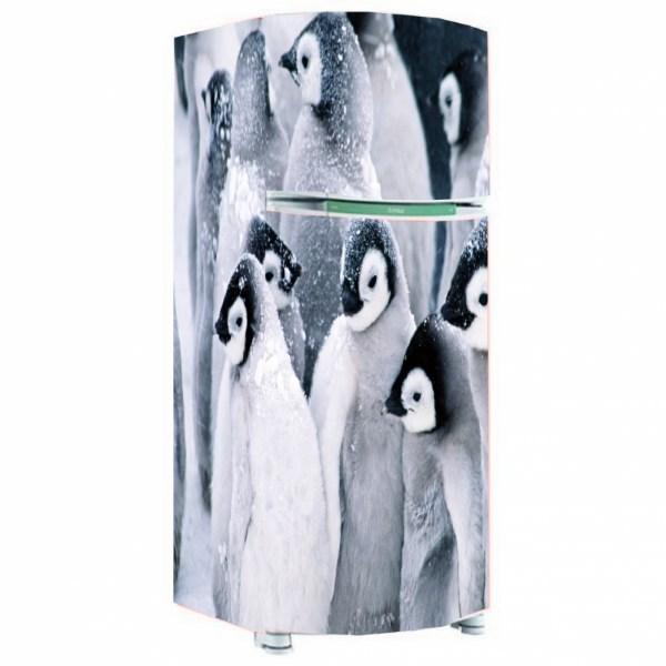 envelopamento de geladeira pinguim