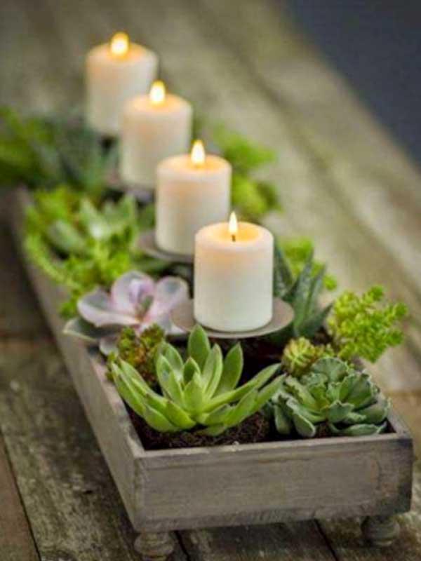 Suculentas plantadas em vasinhos com velas
