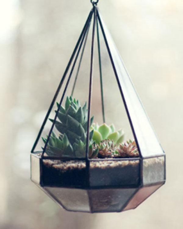 Vaso triangular suspenso para plantar suculenta