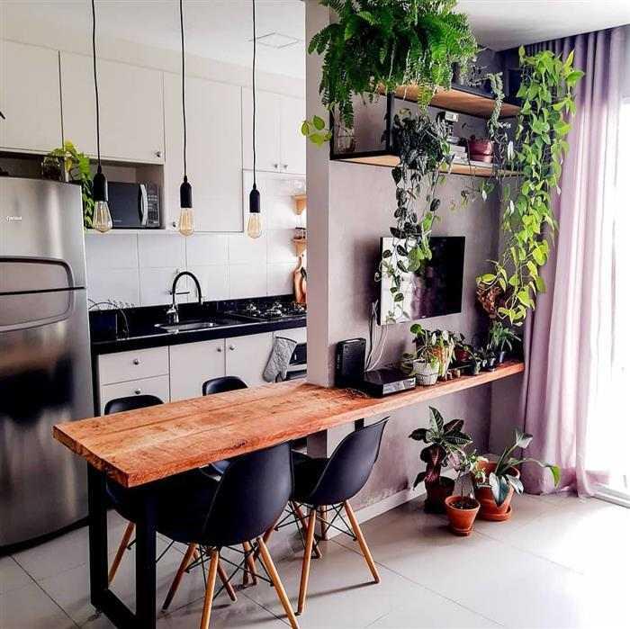 sala com dois ambientes com plantas